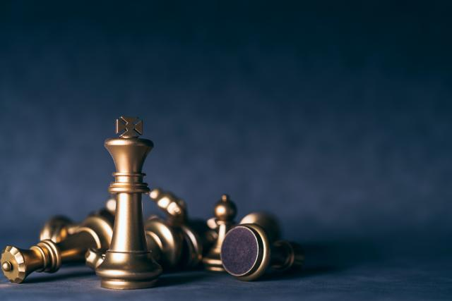 pieces from a game of chess